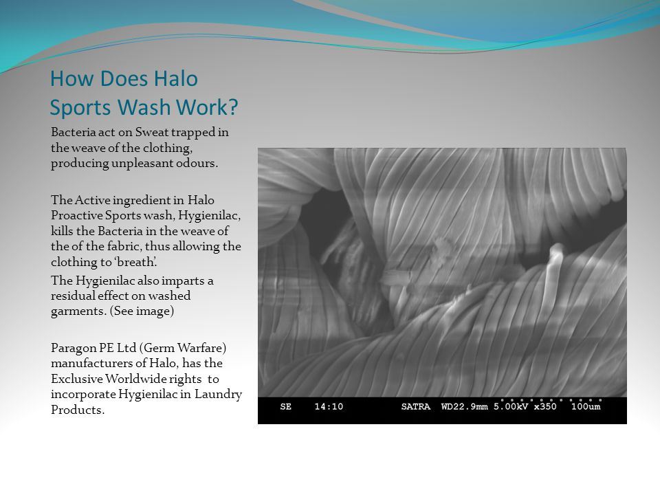 How Does Halo Sports Wash Work.