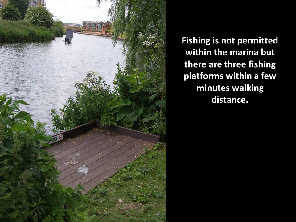 Fishing is not permitted within the marina but there are three fishing platforms within a few minutes walking distance.
