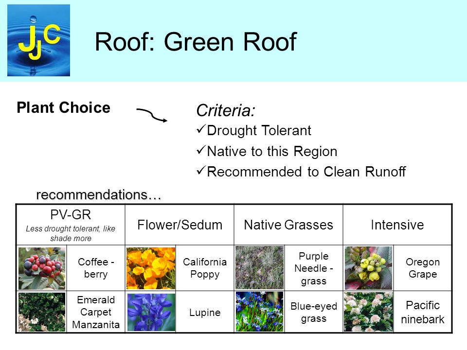 Roof: Green Roof Plant Choice Criteria: Drought Tolerant Native to this Region Recommended to Clean Runoff PV-GR Less drought tolerant, like shade more Flower/SedumNative GrassesIntensive Coffee - berry California Poppy Purple Needle - grass Oregon Grape Emerald Carpet Manzanita Lupine Blue-eyed grass Pacific ninebark recommendations…