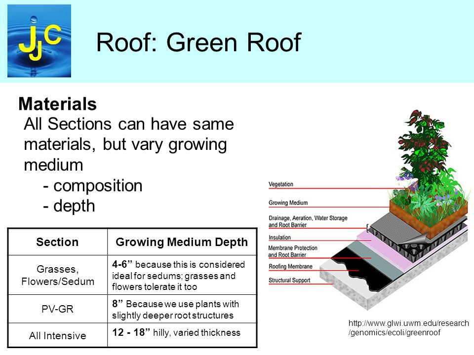 Roof: Green Roof Materials SectionGrowing Medium Depth Grasses, Flowers/Sedum 4-6 because this is considered ideal for sedums; grasses and flowers tolerate it too PV-GR 8 Because we use plants with slightly deeper root structures All Intensive 12 - 18 hilly, varied thickness All Sections can have same materials, but vary growing medium - composition - depth http://www.glwi.uwm.edu/research /genomics/ecoli/greenroof