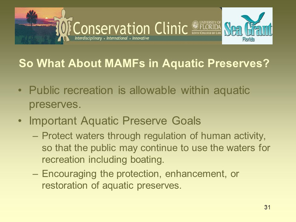 31 So What About MAMFs in Aquatic Preserves? Public recreation is allowable within aquatic preserves. Important Aquatic Preserve Goals –Protect waters