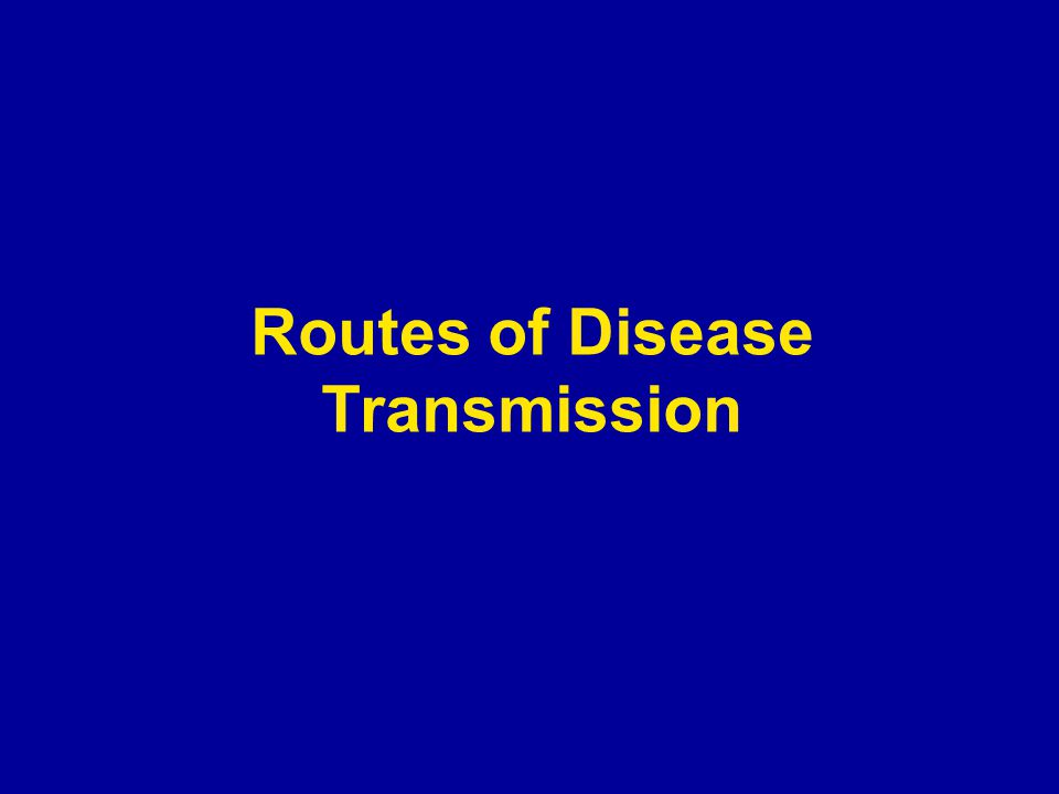 Routes of Disease Transmission