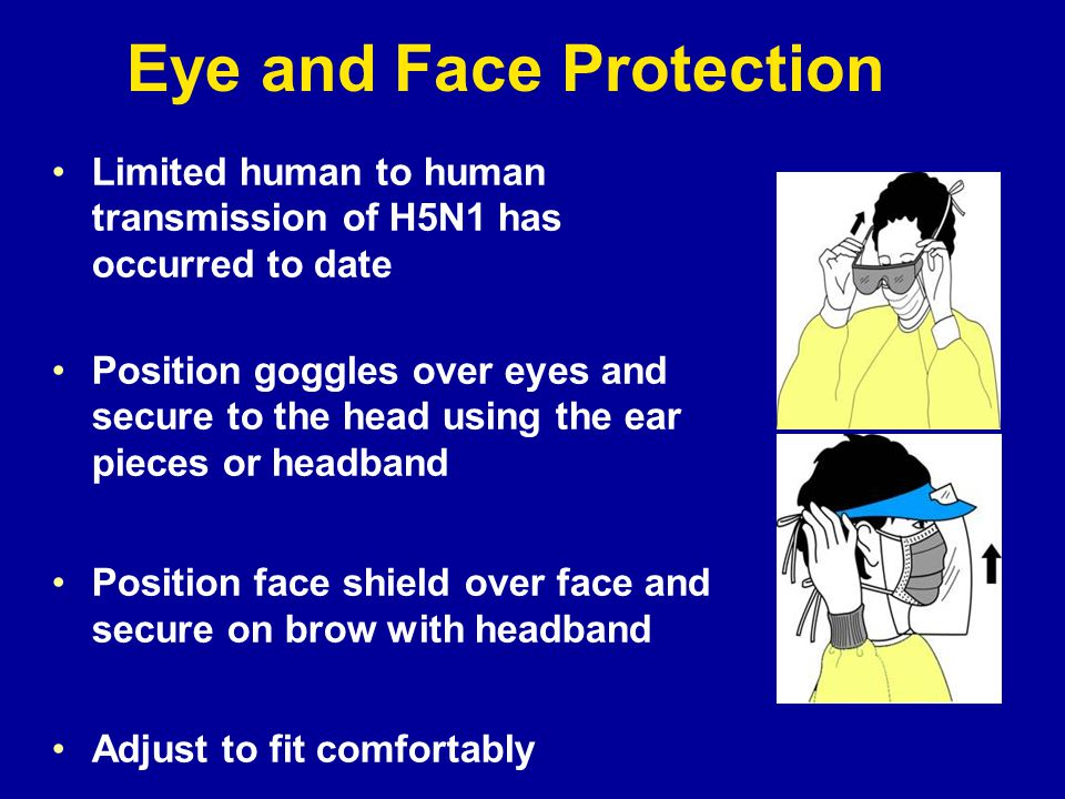 Eye and Face Protection Limited human to human transmission of H5N1 has occurred to date Position goggles over eyes and secure to the head using the ear pieces or headband Position face shield over face and secure on brow with headband Adjust to fit comfortably