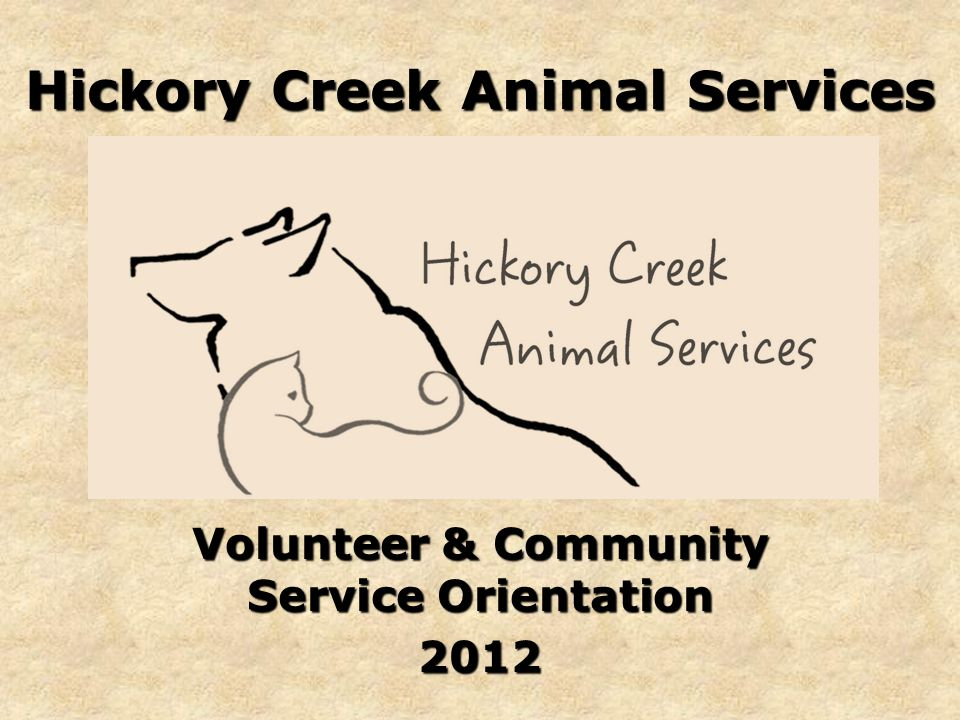 Hickory Creek Animal Services Volunteer & Community Service Orientation 2012