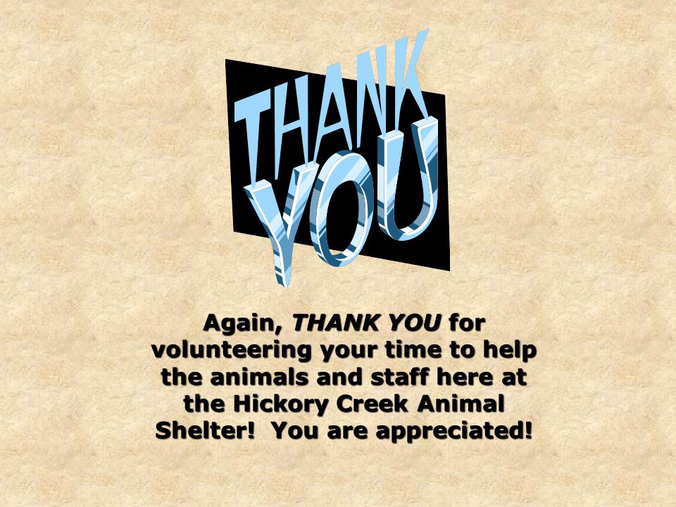 Again, THANK YOU for volunteering your time to help the animals and staff here at the Hickory Creek Animal Shelter.