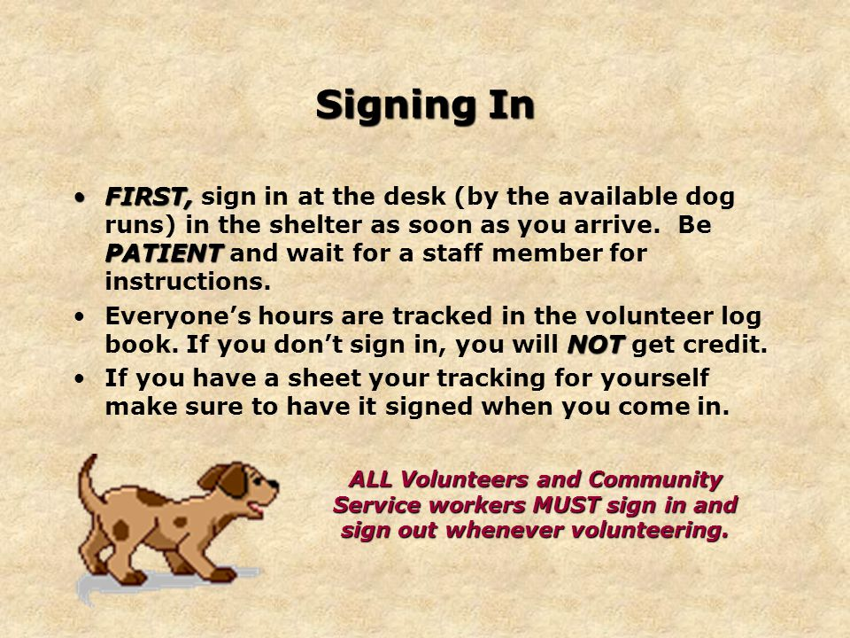 Signing In FIRST, PATIENTFIRST, sign in at the desk (by the available dog runs) in the shelter as soon as you arrive.