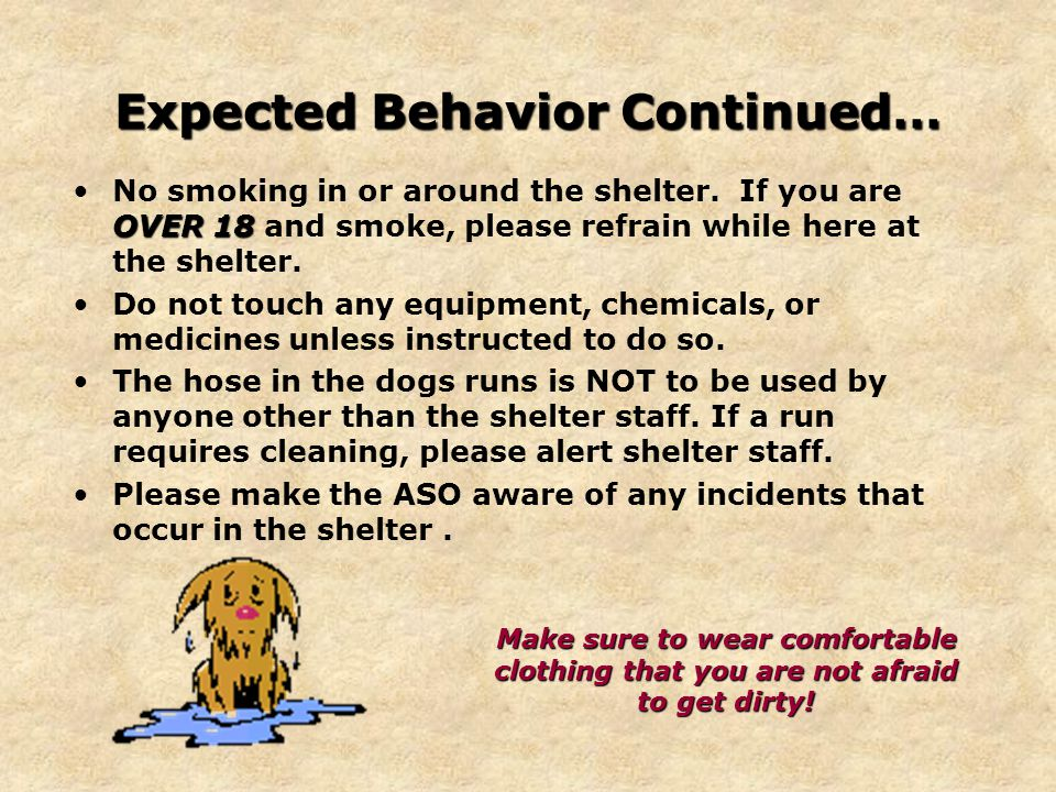 Expected Behavior Continued… OVER 18No smoking in or around the shelter.