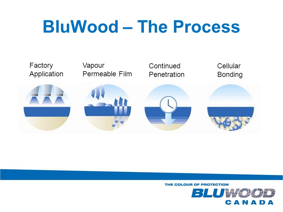 BluWood – The Process Factory Application Vapour Permeable Film Continued Penetration Cellular Bonding