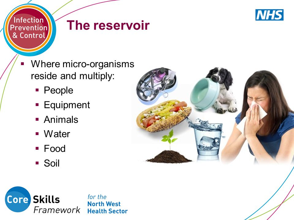 The reservoir  Where micro-organisms reside and multiply:  People  Equipment  Animals  Water  Food  Soil