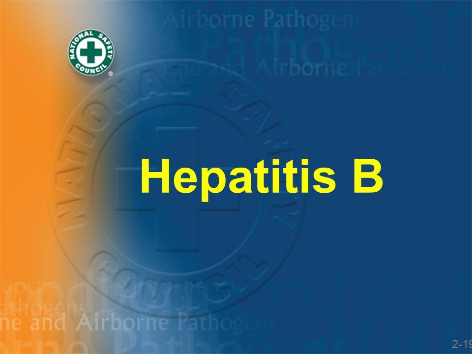 Hepatitis B 2-19