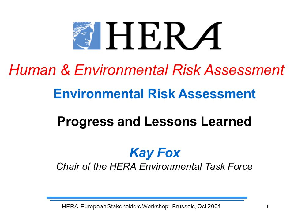 HERA European Stakeholders Workshop: Brussels, Oct 200112 And the highest laundry detergent usage