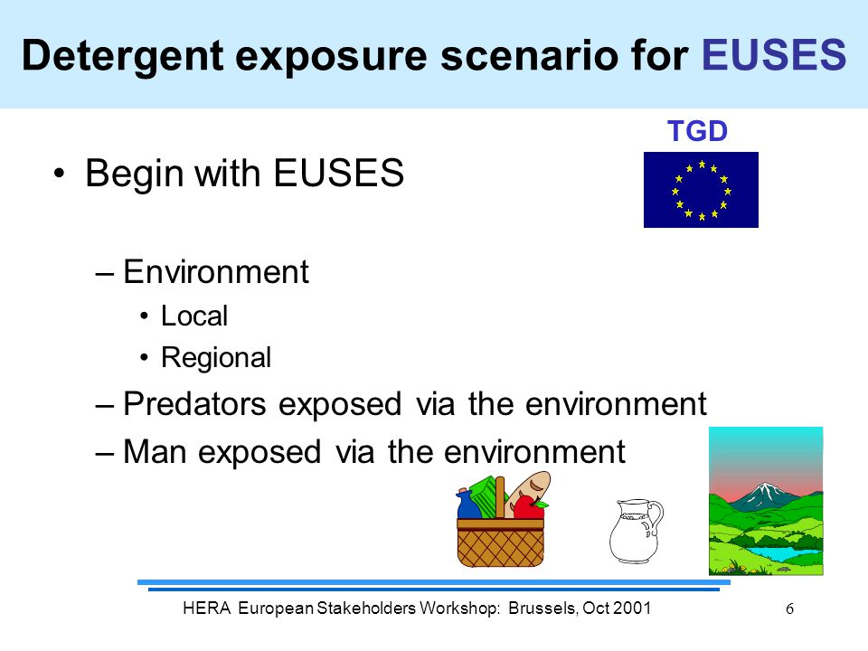 HERA European Stakeholders Workshop: Brussels, Oct 20016 Detergent exposure scenario for EUSES Begin with EUSES –Environment Local Regional –Predators exposed via the environment –Man exposed via the environment TGD