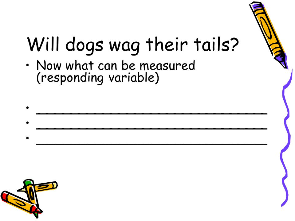 Will dogs wag their tails.