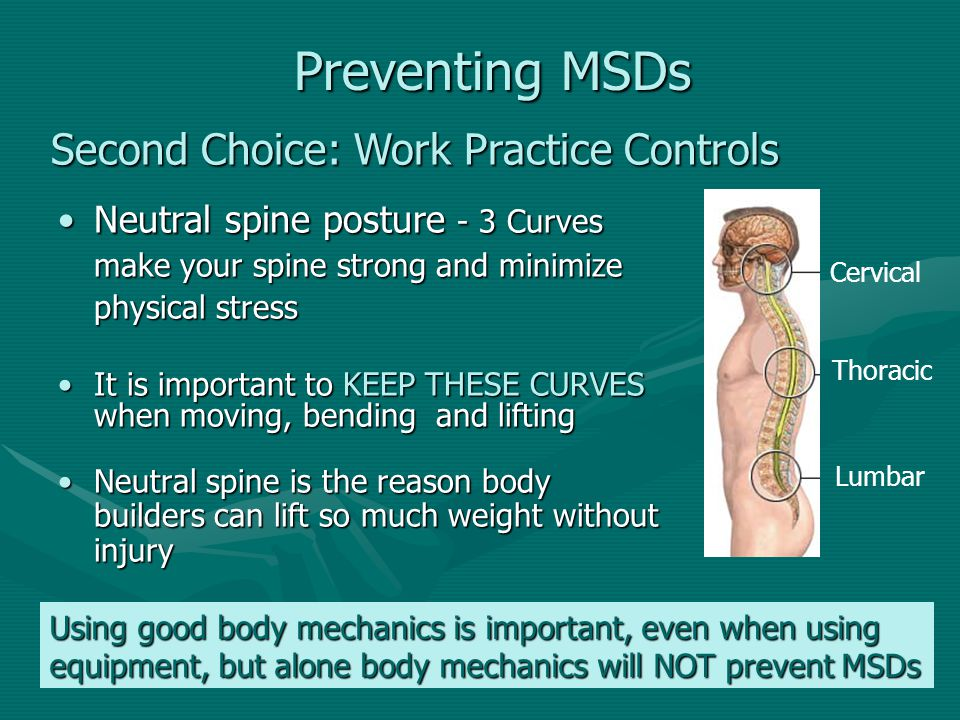 Preventing MSDs Preventing MSDs Neutral spine posture - 3 Curves make your spine strong and minimize physical stressNeutral spine posture - 3 Curves m