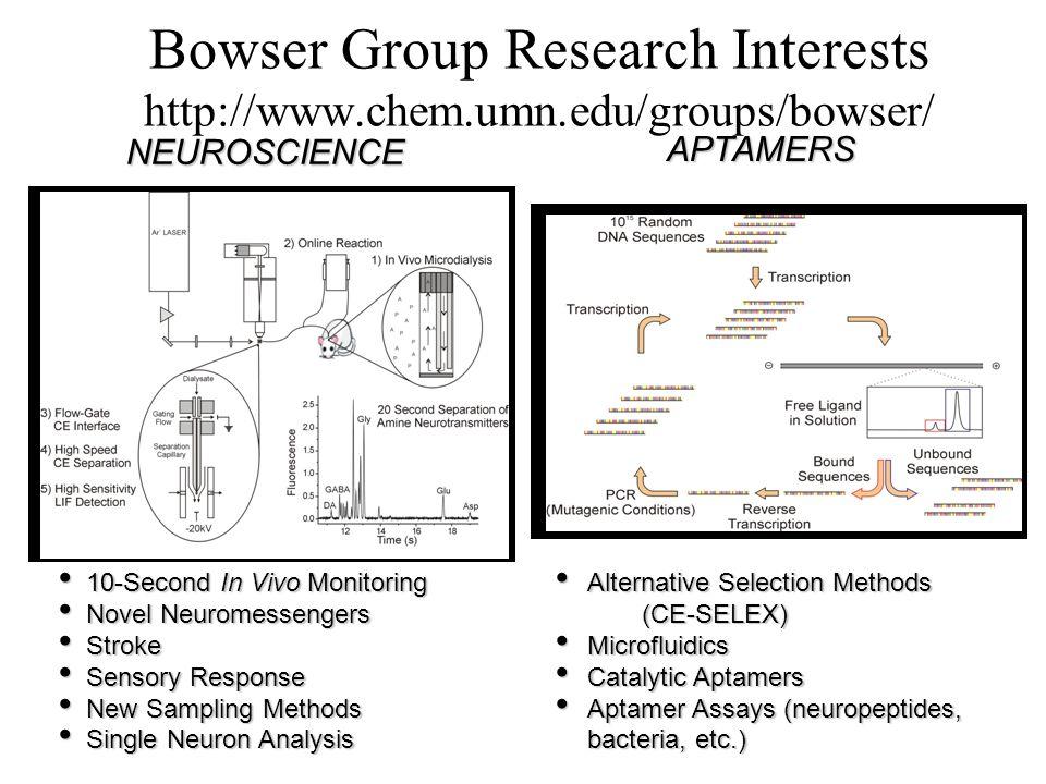 Bowser Group Research Interests http://www.chem.umn.edu/groups/bowser/ NEUROSCIENCE APTAMERS 10-Second In Vivo Monitoring 10-Second In Vivo Monitoring Novel Neuromessengers Novel Neuromessengers Stroke Stroke Sensory Response Sensory Response New Sampling Methods New Sampling Methods Single Neuron Analysis Single Neuron Analysis Alternative Selection Methods Alternative Selection Methods (CE-SELEX) (CE-SELEX) Microfluidics Microfluidics Catalytic Aptamers Catalytic Aptamers Aptamer Assays (neuropeptides, bacteria, etc.) Aptamer Assays (neuropeptides, bacteria, etc.)