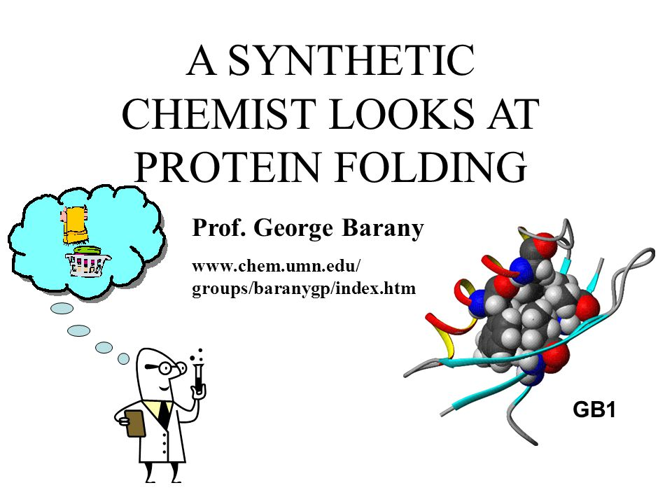 A SYNTHETIC CHEMIST LOOKS AT PROTEIN FOLDING GB1 Prof.