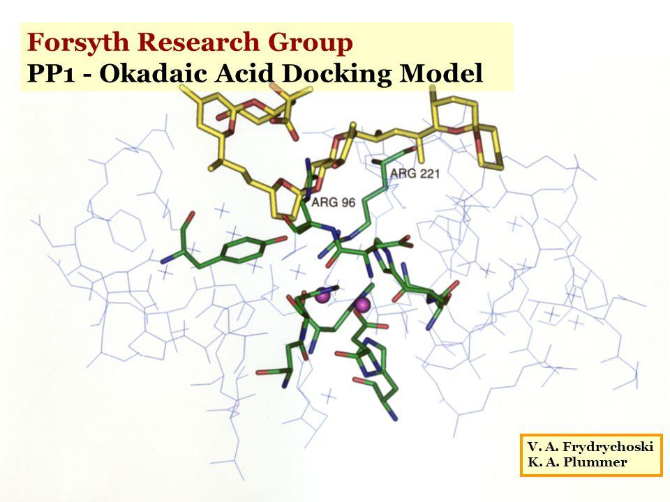 Forsyth Research Group PP1 - Okadaic Acid Docking Model V. A. Frydrychoski K. A. Plummer