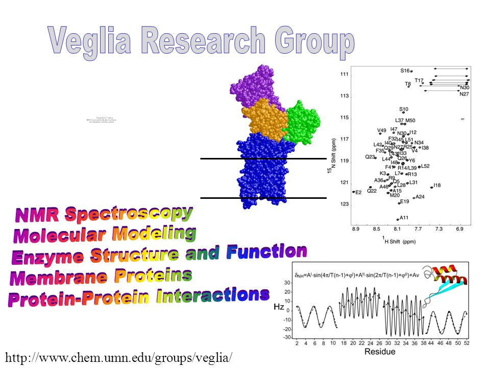 http://www.chem.umn.edu/groups/veglia/