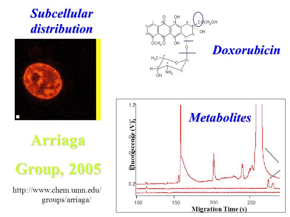 Subcellular distribution 1.2 1.0 0.8 0.6 0.4 0.2 Fluorescence (V) 250200150100 Migration Time (s) Doxorubicin Metabolites Arriaga Group, 2005 http://www.chem.umn.edu/ groups/arriaga/
