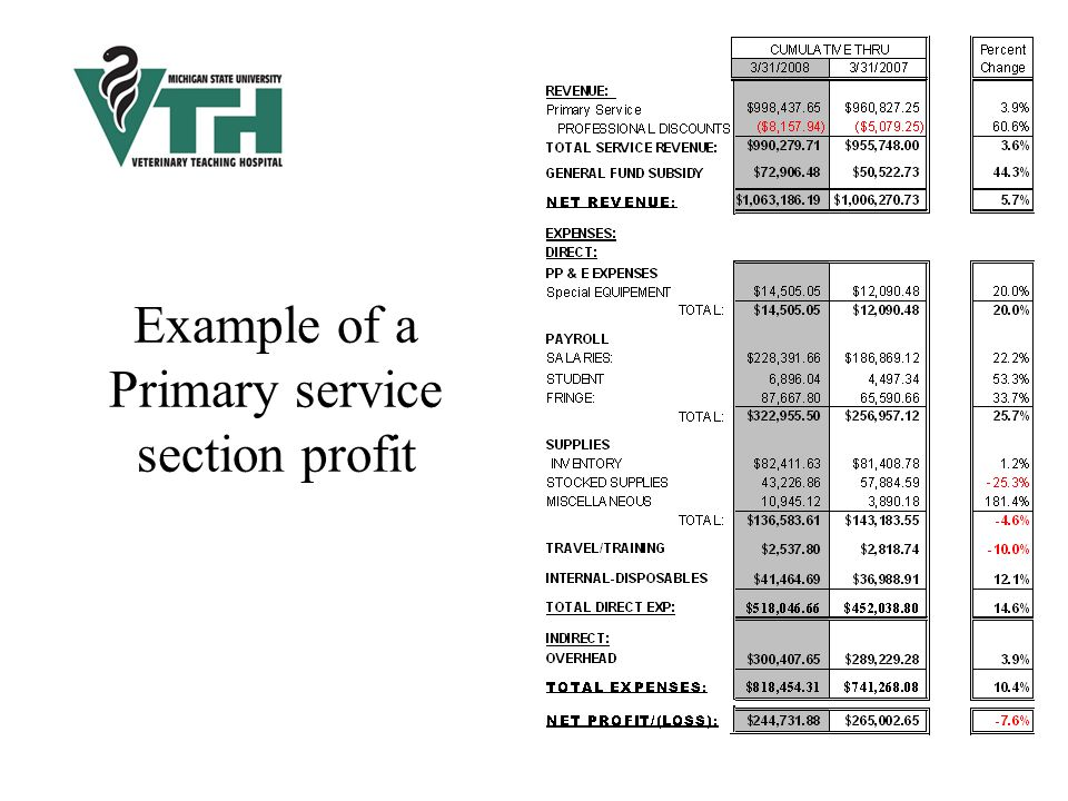 Example of a Primary service section profit