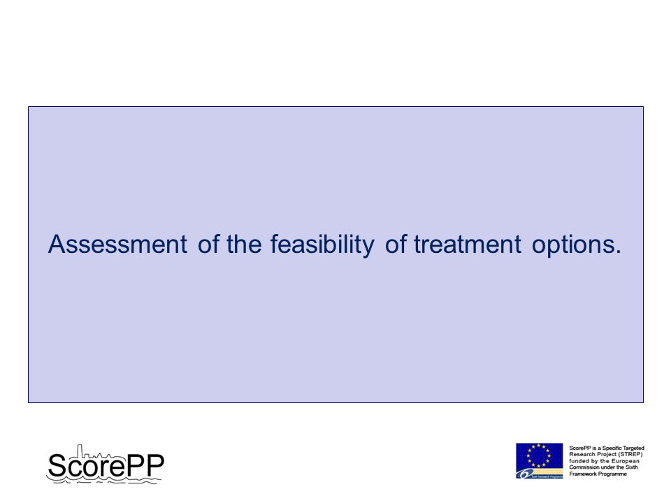 Assessment of the feasibility of treatment options.