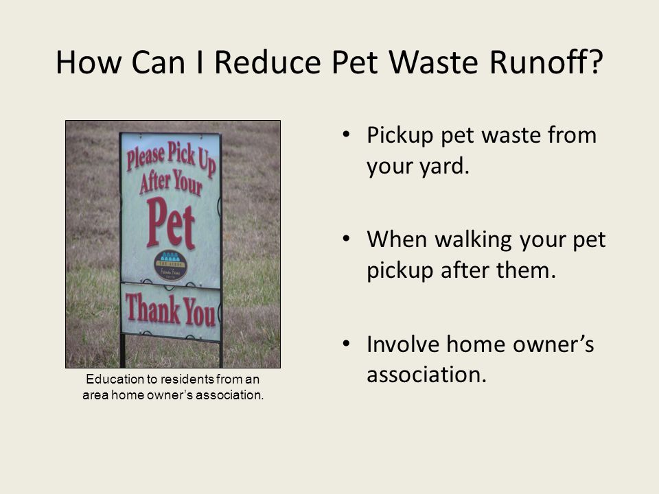 How Can I Reduce Pet Waste Runoff? Pickup pet waste from your yard. When walking your pet pickup after them. Involve home owner's association. Educati