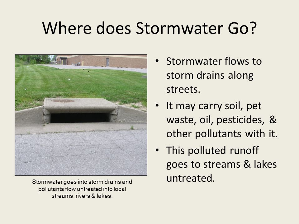 Where does Stormwater Go? Stormwater flows to storm drains along streets. It may carry soil, pet waste, oil, pesticides, & other pollutants with it. T
