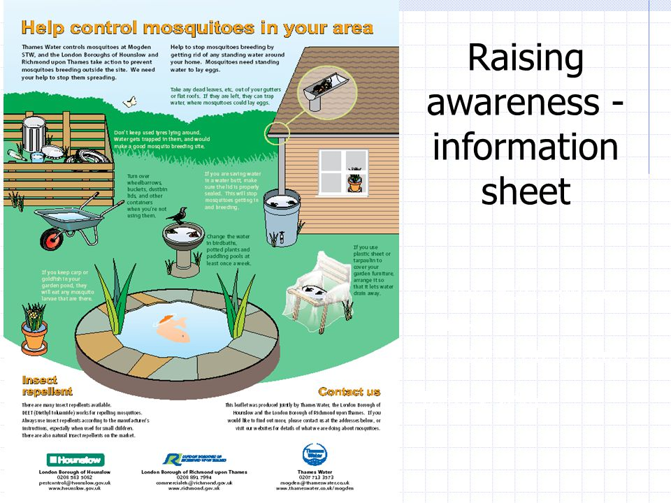 Raising awareness - information sheet London Boroughs of Hounslow / Richmond on Thames Thames Water