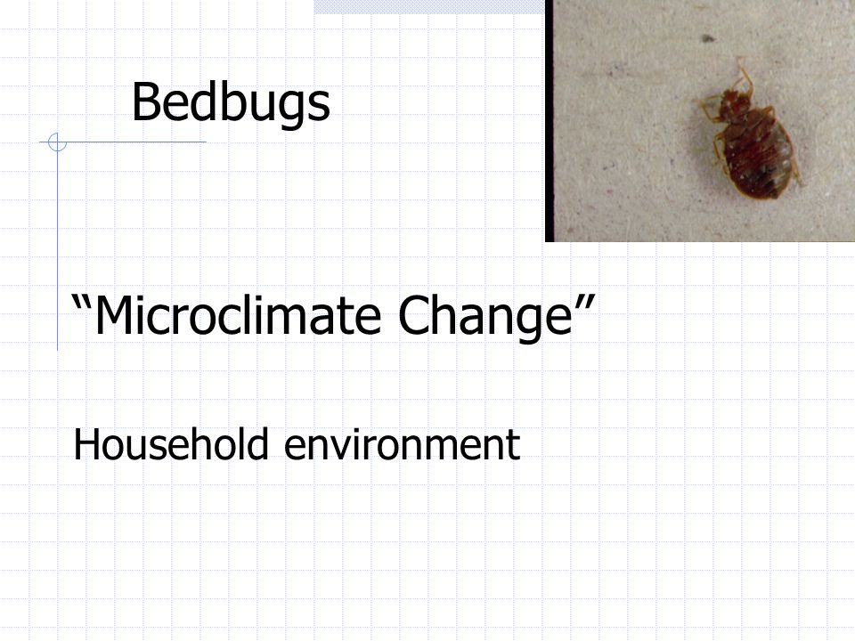 "Bedbugs ""Microclimate Change"" Household environment"