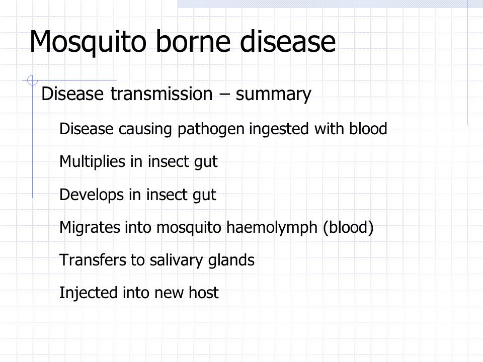 Mosquito borne disease Disease transmission – summary Disease causing pathogen ingested with blood Multiplies in insect gut Develops in insect gut Mig