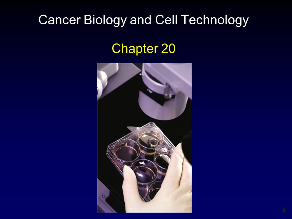 42 Table 20.4 Some Genes Implicated in Human Cancers