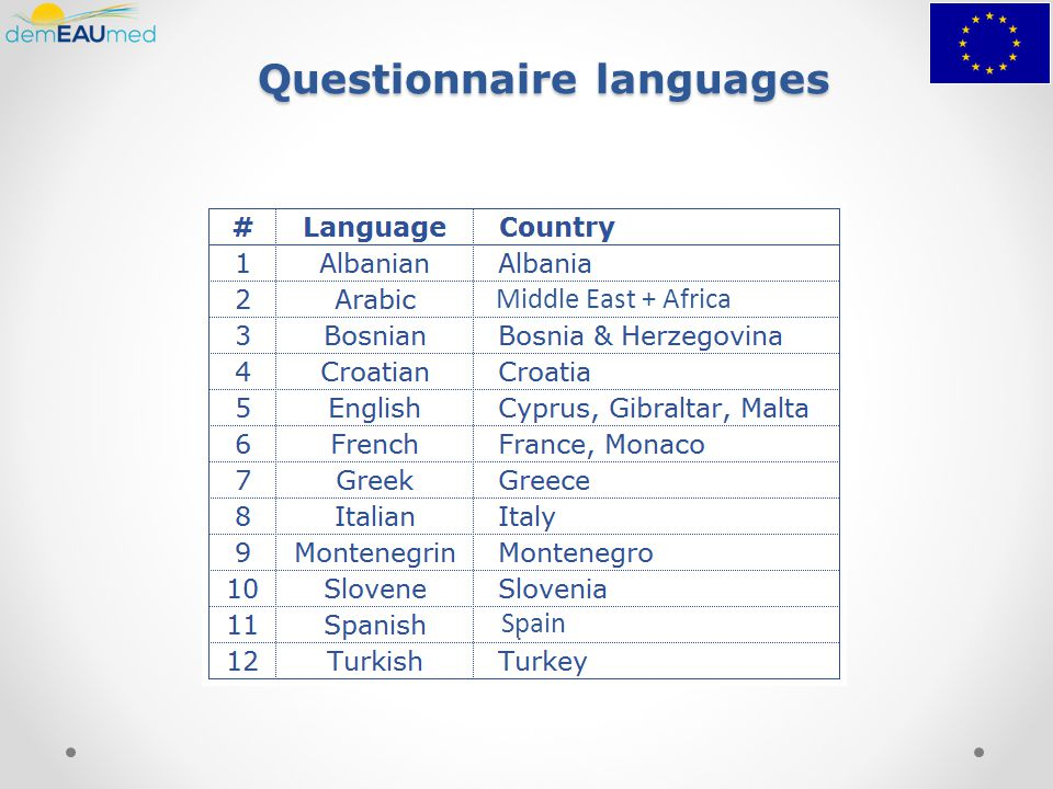 Questionnaire languages Middle East + Africa Spain