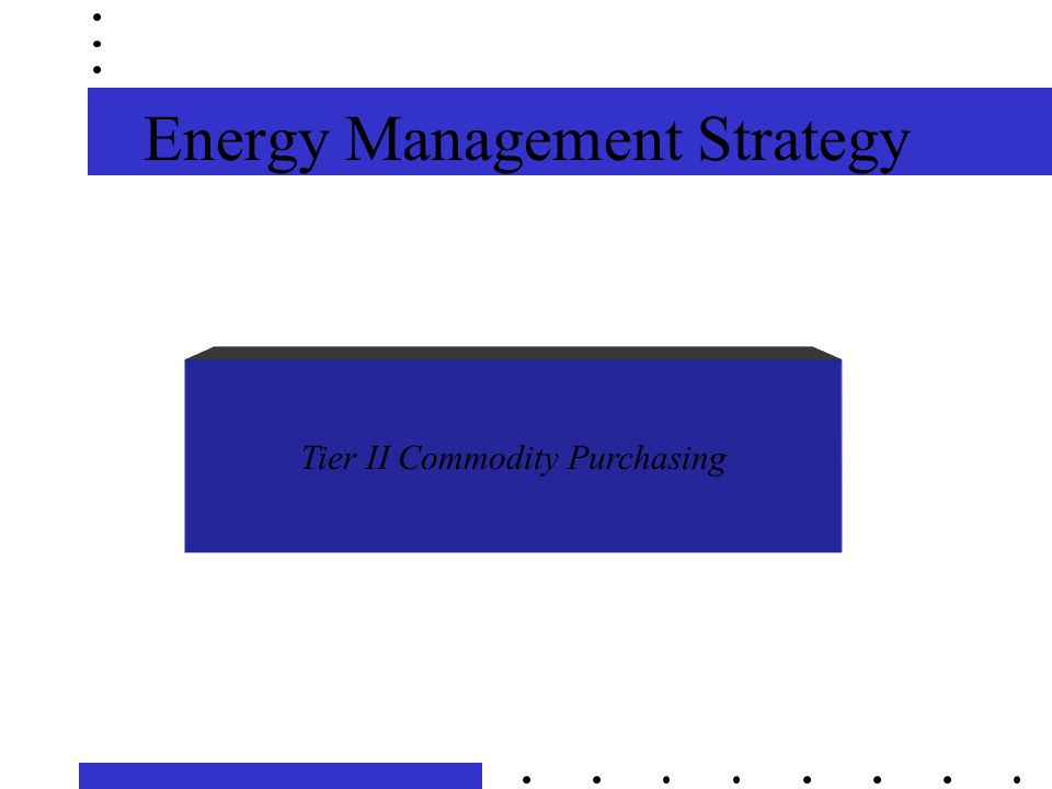 Energy Management Strategy Tier II Commodity Purchasing
