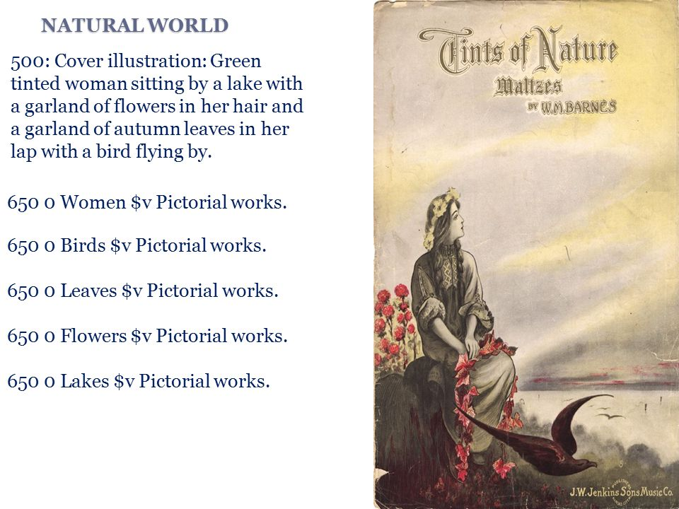 NATURAL WORLD 500: Cover illustration: Green tinted woman sitting by a lake with a garland of flowers in her hair and a garland of autumn leaves in her lap with a bird flying by.
