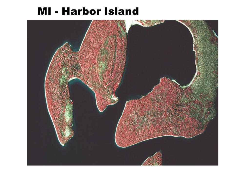 MI - Harbor Island