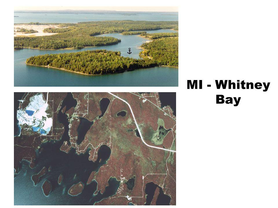 MI - Whitney Bay