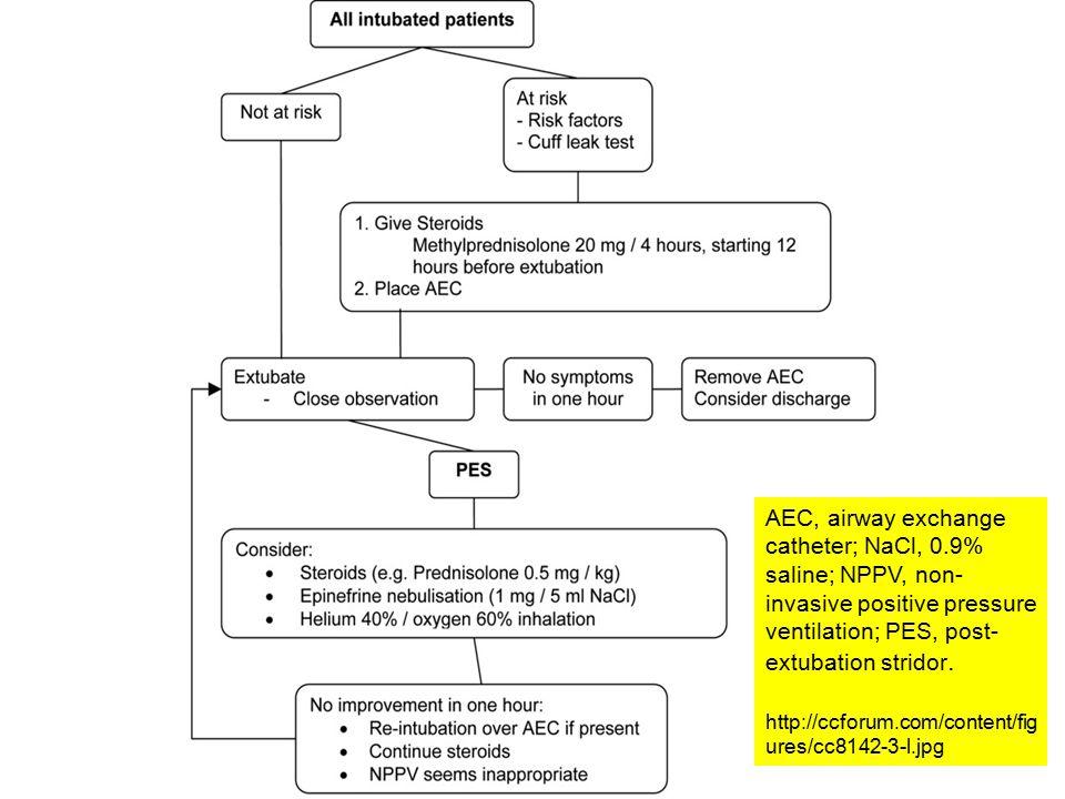 AEC, airway exchange catheter; NaCl, 0.9% saline; NPPV, non- invasive positive pressure ventilation; PES, post- extubation stridor.