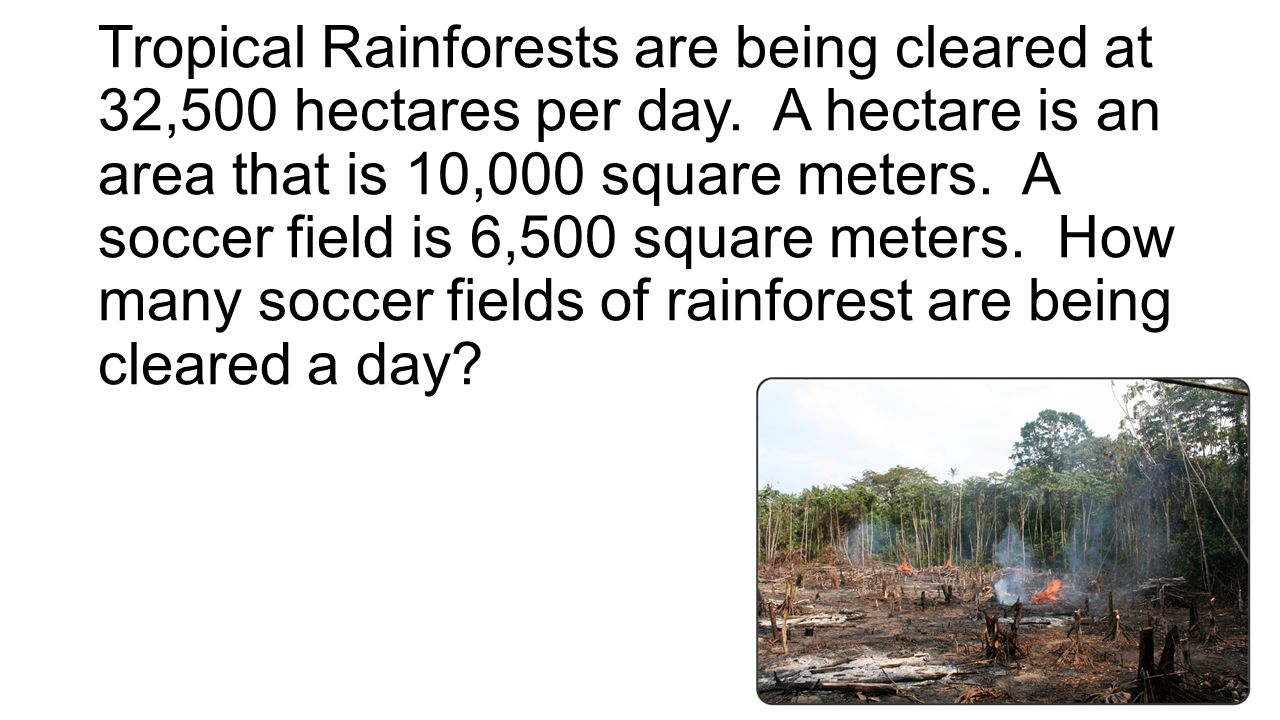Tropical Rainforests are being cleared at 32,500 hectares per day. A hectare is an area that is 10,000 square meters. A soccer field is 6,500 square m