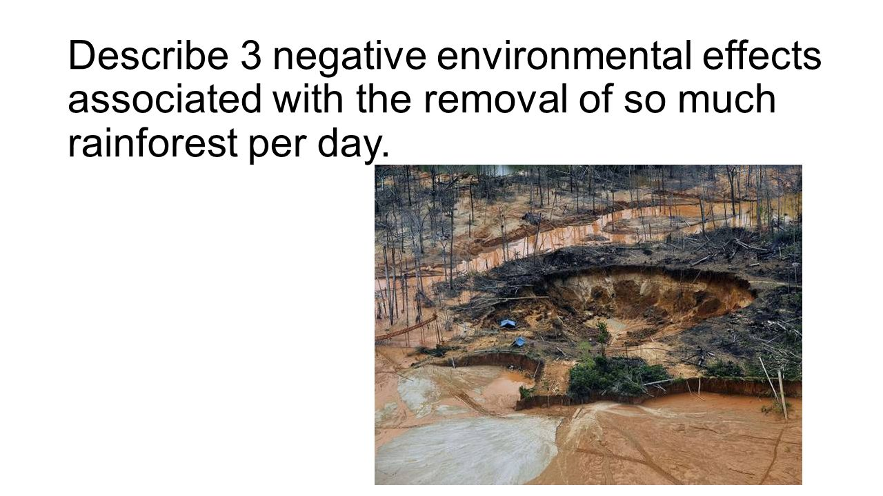 Describe 3 negative environmental effects associated with the removal of so much rainforest per day.