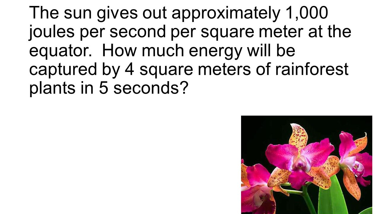 The sun gives out approximately 1,000 joules per second per square meter at the equator. How much energy will be captured by 4 square meters of rainfo