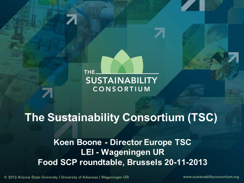 The Sustainability Consortium (TSC) Koen Boone - Director Europe TSC LEI - Wageningen UR Food SCP roundtable, Brussels 20-11-2013