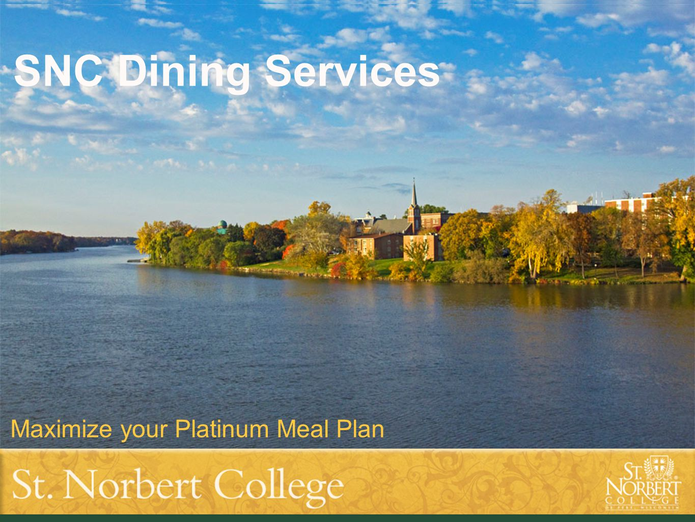 Title of presentation goes here Subtitle text goes here SNC Dining Services Maximize your Platinum Meal Plan