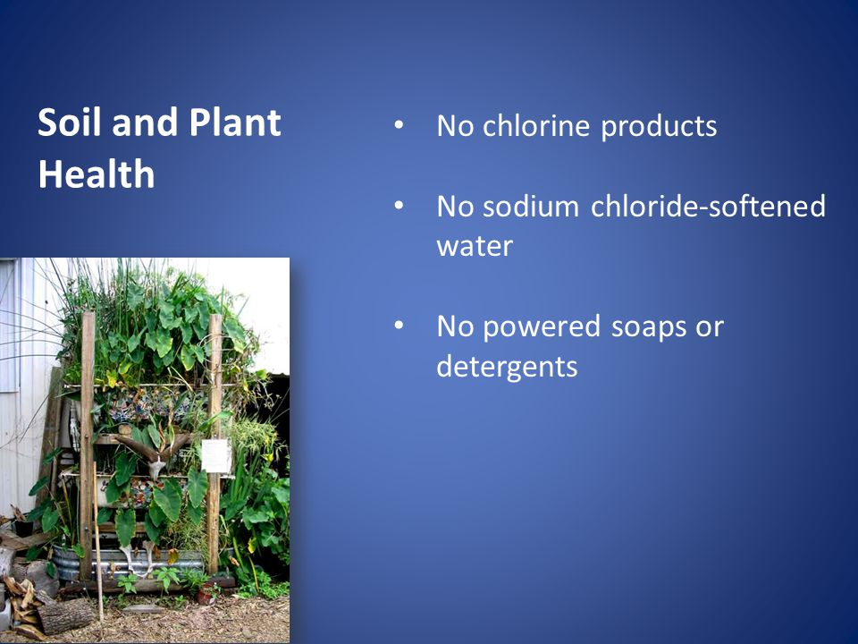 Soil and Plant Health No chlorine products No sodium chloride-softened water No powered soaps or detergents