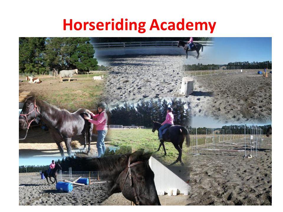 Horseriding Academy