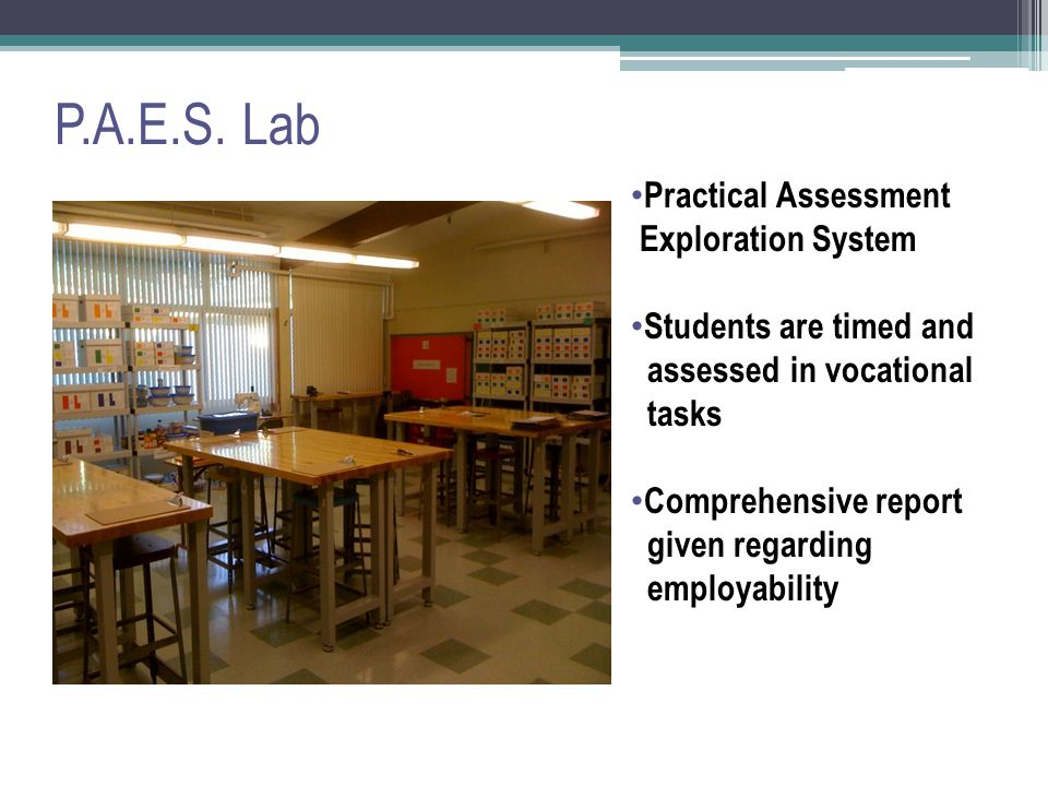 P.A.E.S. Lab Practical Assessment Exploration System Students are timed and assessed in vocational tasks Comprehensive report given regarding employab