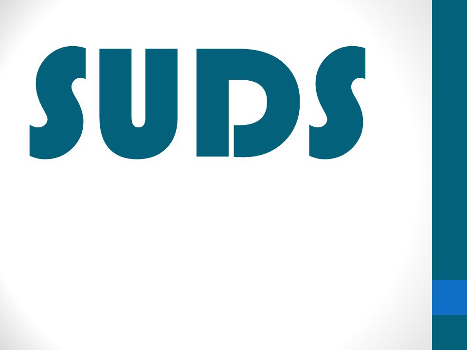 Strategy: Overall Being a green laundromat and offering only locally produced foods & beverages, Suds maintains its stewardship of our city, state, and the planet.