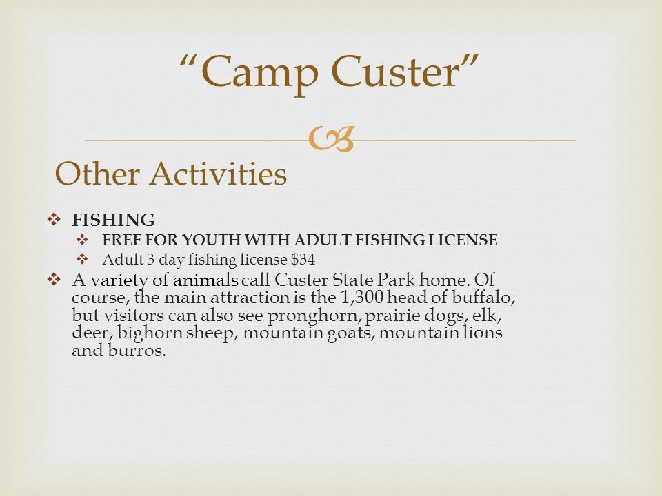  Camp Custer Other Activities  FISHING  FREE FOR YOUTH WITH ADULT FISHING LICENSE  Adult 3 day fishing license $34  A variety of animals call Custer State Park home.