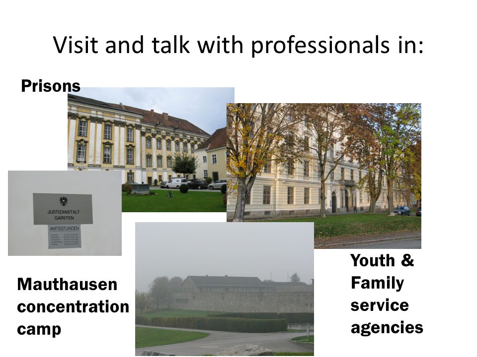Visit and talk with professionals in: Prisons Youth & Family service agencies Mauthausen concentration camp