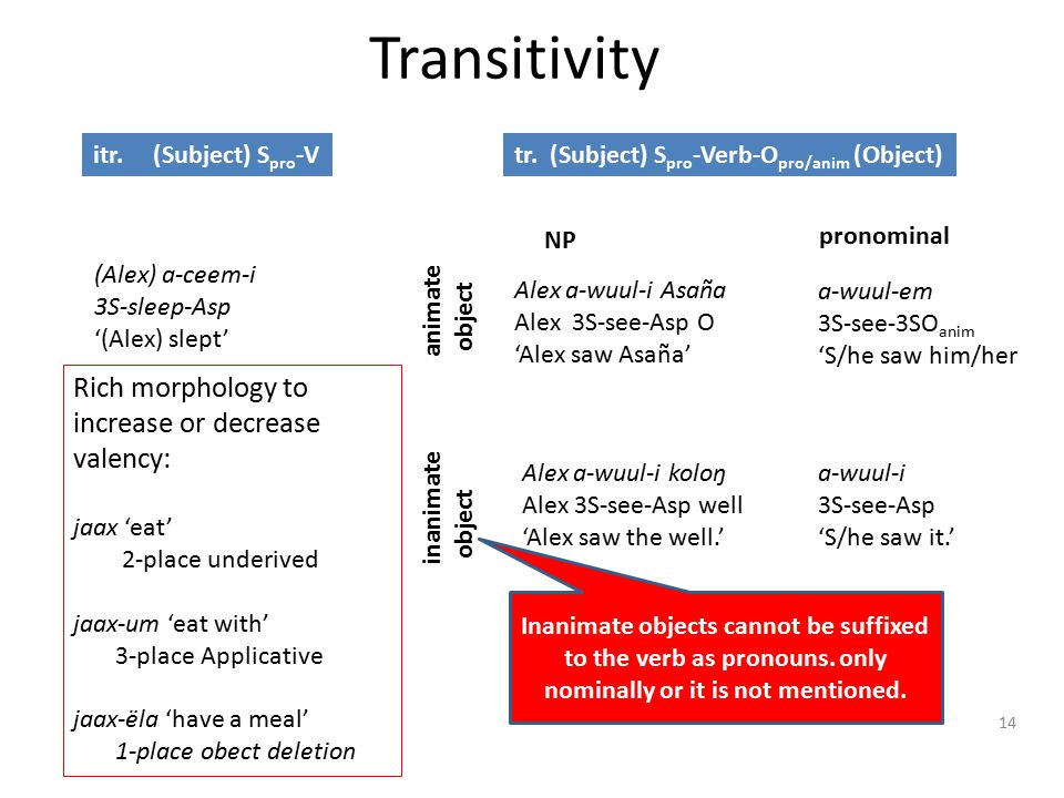 Transitivity 14 Inanimate objects cannot be suffixed to the verb as pronouns.