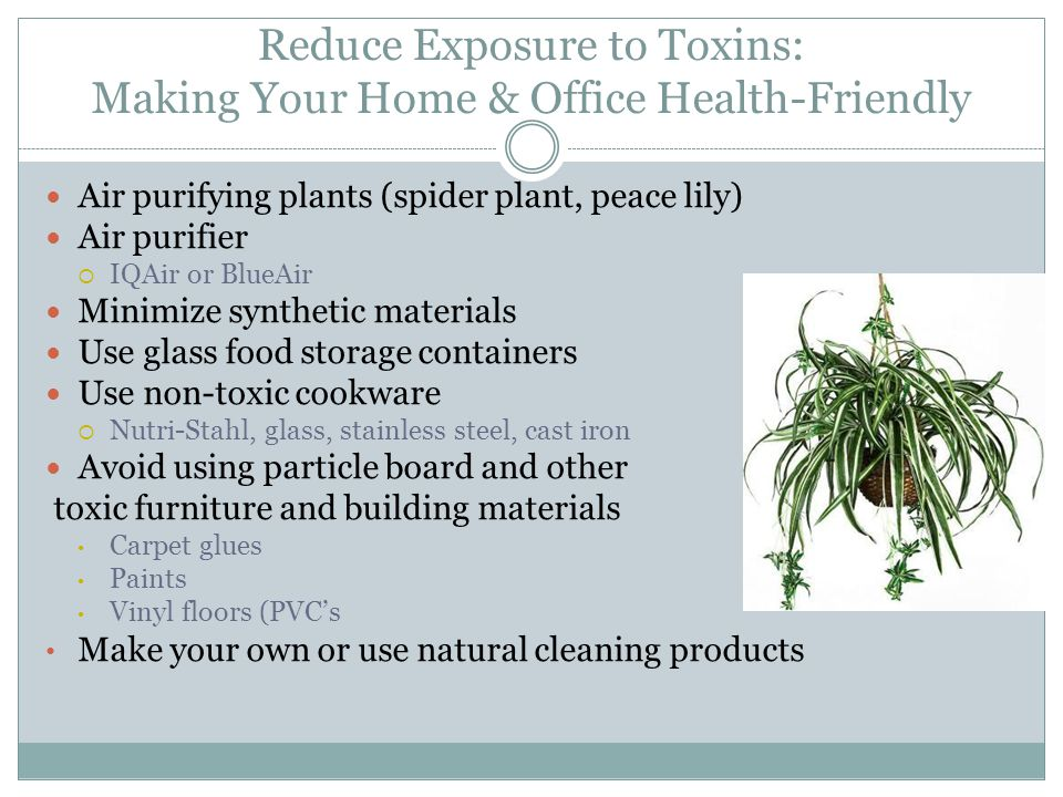 Reduce Exposure to Toxins: Making Your Home & Office Health-Friendly Air purifying plants (spider plant, peace lily) Air purifier  IQAir or BlueAir Minimize synthetic materials Use glass food storage containers Use non-toxic cookware  Nutri-Stahl, glass, stainless steel, cast iron Avoid using particle board and other toxic furniture and building materials Carpet glues Paints Vinyl floors (PVC's Make your own or use natural cleaning products
